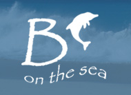 Luxury Villa Anguilla 'B On The Sea' Logo